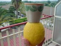 15_limone_2
