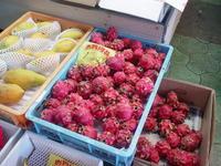 mercato_doragon