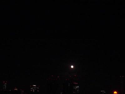 Tokyo_luna