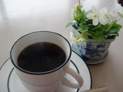 Touji_caffe